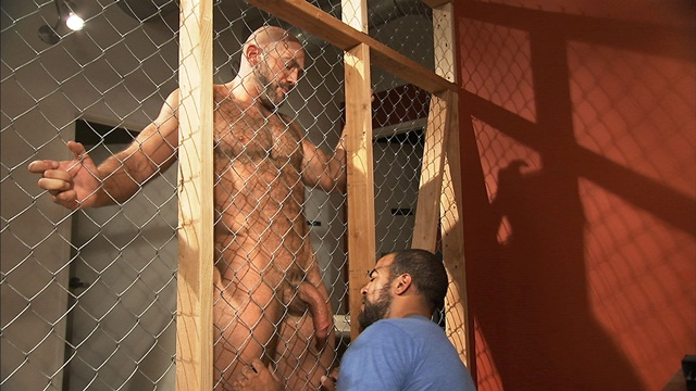TitanMen bearded alphamale Jesse Jackman ass fucked bottoms Roman Wright 3 download full movie torrents and gay porn photo gallery Titan Men: Jesse Jackman with Roman Wright